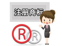 吉林省商标注册公司简介